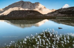 The Gallery, Guillestre, expo/vente photographies nature montagne
